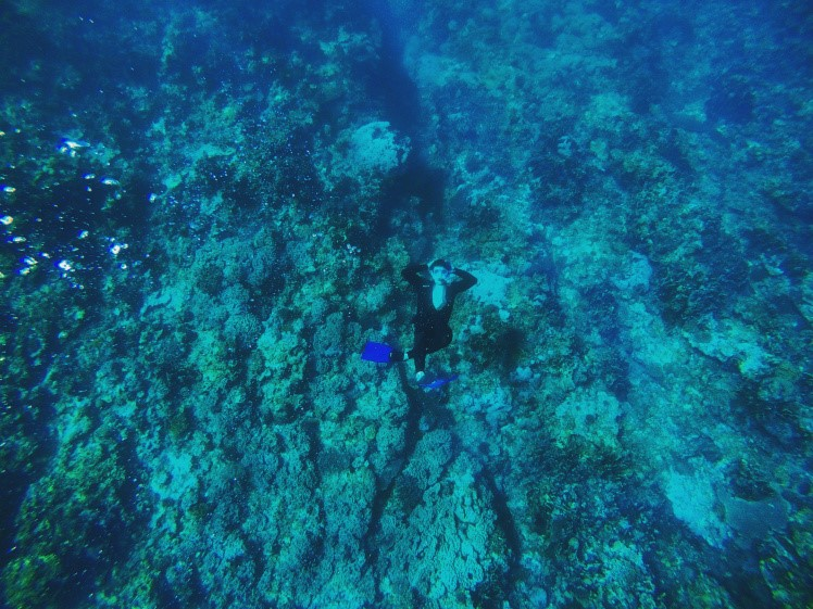 A picture of myself, 30 feet under the surface, relaxing right about the corals.